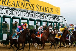 the-preakness-stakes